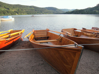Boote am Titisee Schwarzwald