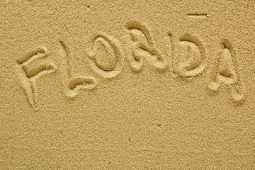 Sand beach of Florida
