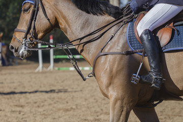 Horse Show Jumping closeup unidentified riders boot saddle reins detail.