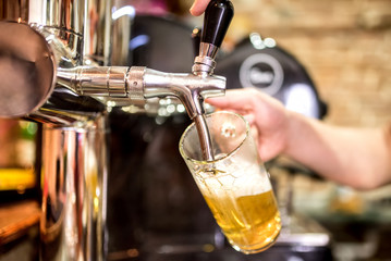 barman hand at beer tap pouring a draught lager beer serving in a restaurant or pub