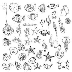 Drawn marine elements