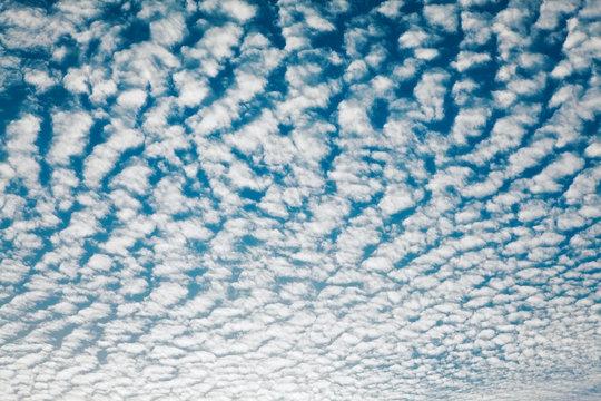 Cloudscape With Altocumulus Clouds