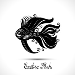 Vector Exotic Fish. Patterned Sea Logo Collection