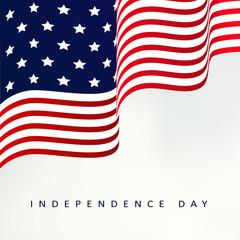Independence day, vector illustration background with usa flag