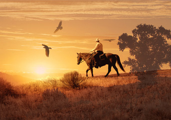 A cowboy on his horse with crows flying above.  A cowboy takes a look to his right and see three large crows flying towards him.