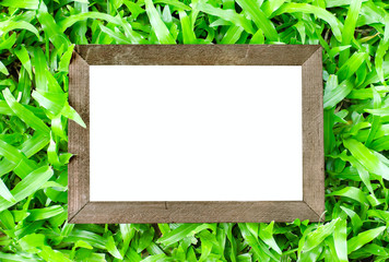 Close up of vintage wooden frame on green grass background