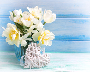 Background with fresh narcissus and tulips in blue vase and hear