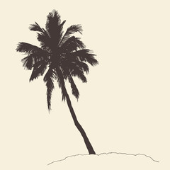Palm tree Bounty vintage engraving vector illustration hand drawn
