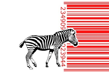 Zebra barcode animal design art idea