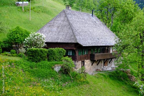 historisches schwarzwaldhaus mit walmdach aus holzschindeln stockfotos und lizenzfreie bilder. Black Bedroom Furniture Sets. Home Design Ideas