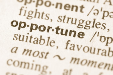 Dictionary definition of word opportune