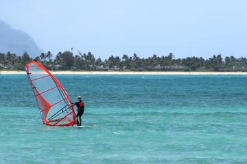 A windsurf on a tropical beach