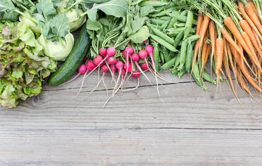spring vegetables / fresh Turnip, pea pods, carrots, cucumbers, lettuce and radishes cut