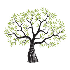 Vector olive tree.