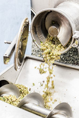 Grinding Machine Processing Grapes