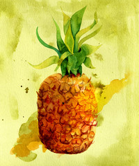 Watercolour pineapple with a splash