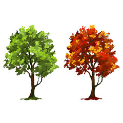 Tree vector illustration   painted watercolor
