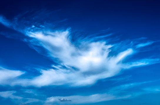 Beautiful cirrus clouds