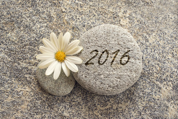 2016 written on a stone backgroound with a daisy