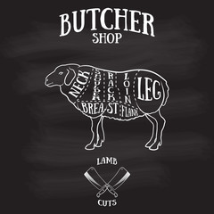 Butcher cuts scheme of lamb or mutton