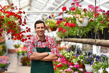 Portrait eines erfolgreichen Gärtners im Gewächshaus