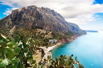 Agave grows near the sea, Greece