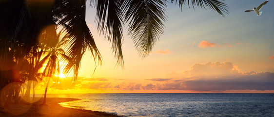 Aluminium Prints Orange Art Beautiful sunrise over the tropical beach