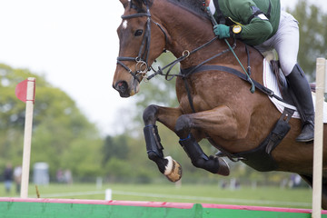 Horse jumping at an event