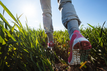 woman hiker with backpacks walking through the grass meadow