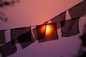 Prayer buddhist flags with a recently risen sun behind them.
