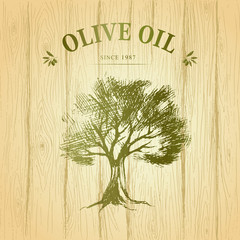 Olive tree on wood paper. Olives oil. Vector