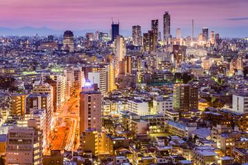 Tokyo, Japan Cityscape towards Shinjuku Ward