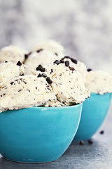 Chocolate Chip Ice Cream