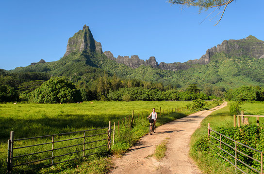 Cycling on tropical Moorea