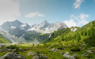 Panorama einer Almlandschaft in Tirol