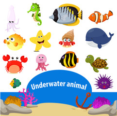 Illustrator of underwater animal