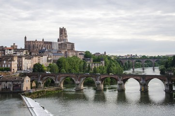 Sainte-Cecile Cathedral  and cityscape of Albi , France