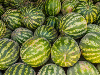 Ripe watermelons at the bazaar in Bukhara, Uzbekistan