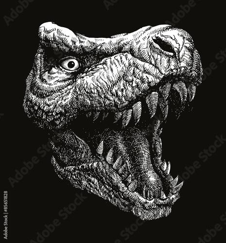 Trex Dinosaur. Vector background. Eps 8
