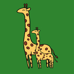 Cute giraffe on green background