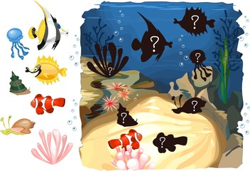 Find the shadow of marine inhabitants