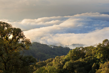Morning View of Inthanon Mountain, Chiang Mai, Thailand