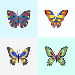 vector illustration set of abstract butterflies