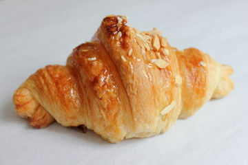 Fresh delicious croissant isolated  white background.