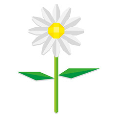 Low Poly Style Daisy Flower Isolated