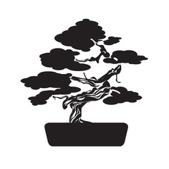 Black Bonsai Tree