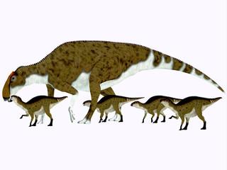 Brachylophosaurus Side Profile