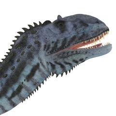 Majungasaurus Dinosaur Head