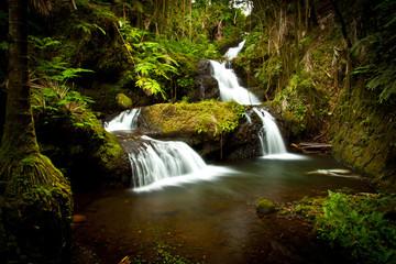 Beautiful Hawaiian Waterfall