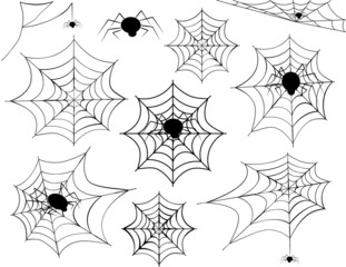 Spider Web Collection-Collection of different spider webs and different spiders including corner spider webs, hanging spiders and a variety of other spider webs